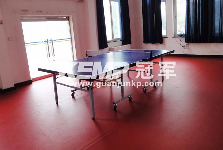 乒乓球PVC地板