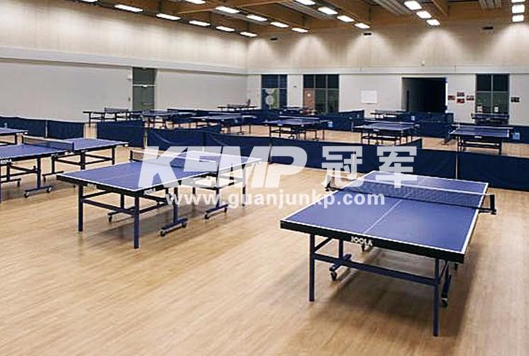 乒乓球室内塑胶地板