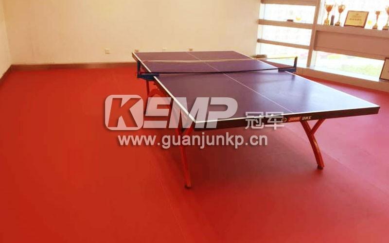乒乓球室地板