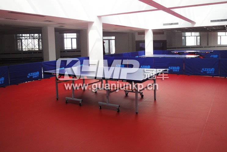 室内PVC塑胶运动地板
